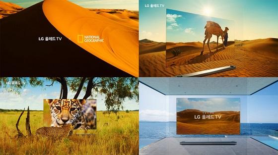 내셔널 지오그래픽과 함께 남아프리카공화국, 두바이, 태국 등지서 대자연 영상을 촬영해 광고 영상에 담았다. ⓒLG전자