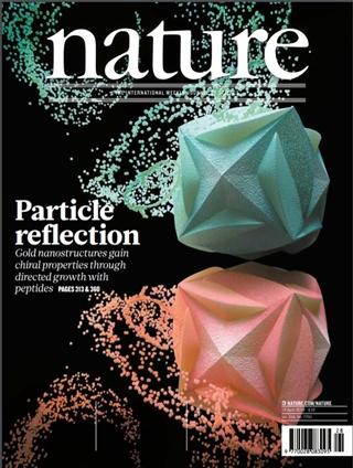 국제학술지 네이쳐(Nature, IF 40.137) 표지 이미지 (거울 대칭상의 금 나노 기하구조).ⓒ네이처