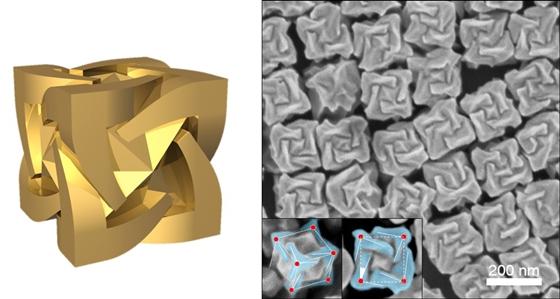 연구진이 최초로 개발한 거울 대칭상의 금 나노 기하구조 펩타이드를 이용하여 세계 최초로 구현된 거울상 기하 구조를 가진 금 나노 입자의 모형(왼쪽) 및 전자현미경 사진.ⓒ연구팀 제공