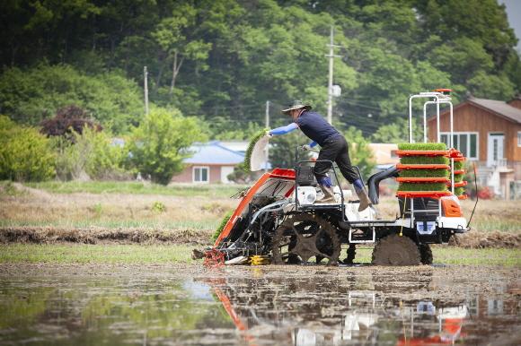 자율주행 이앙기에 탑승한 농부는 이앙기가 자율주행 하는 동안 모판 운반을 하고 있다.ⓒSK텔레콤