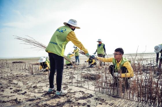 올해 8월 하기노르 지역에서 실시된 내몽고 사막화 방지사업 '현대그린존 프로젝트'에서 봉사단이 사막화 방지 활동을 하는 모습ⓒ현대차그룹