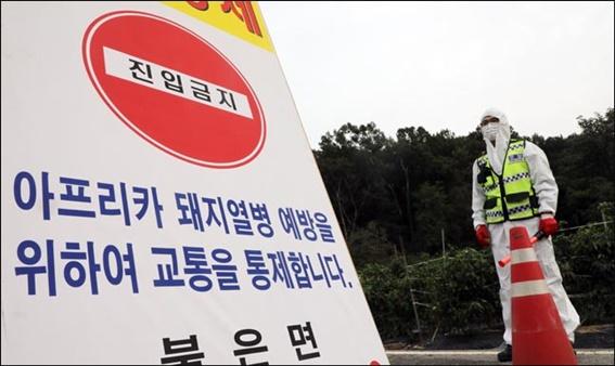 지난 9월 25일 인천 강화군 불은면에서 아프리카돼지열병(ASF) 의심 신고가 접수된 가운데 양돈농가로 향하는 도로가 통제되고 있다. ⓒ데일리안DB