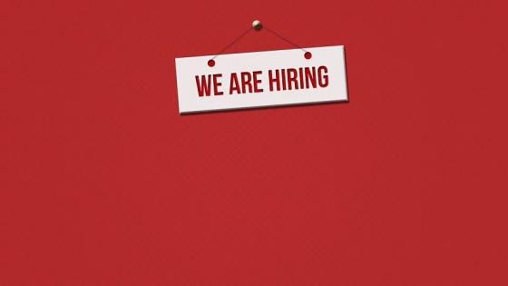비바리퍼블리카가 현재 채용을 진행 중인 직무는 189개에 달한다.ⓒ픽사베이