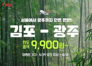 티웨이항공, 내달 26일 김포∼광주 부정기 노선 취항