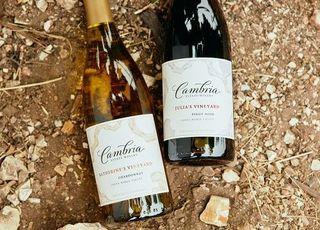 하이트진로 캘리포니아 와인 '캠브리아' 출시