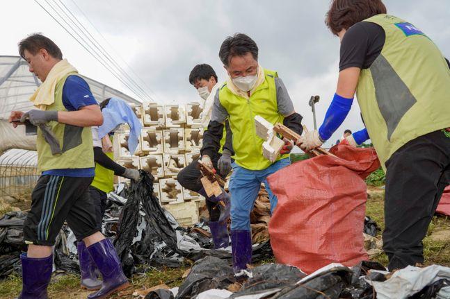 지난 13일, 경기 파주 소재 딸기 농가에서 김인태 NH농협금융지주 부사장(사진 오른쪽 2번째) 등 임직원 봉사단이 폭우 피해로 어려움을 겪 고 있는 농가의 신속한 피해복구를 위해 폐기물 정리 작업을 하고 있다.ⓒNH농협금융지주