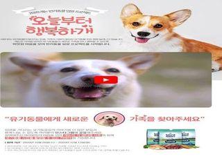 캐논, 반려동물 입양프로젝트 캠페인 실시