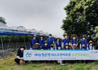 [포토] 9년째 자매결연마을과 인연…NH농협은행 리스크관리부문